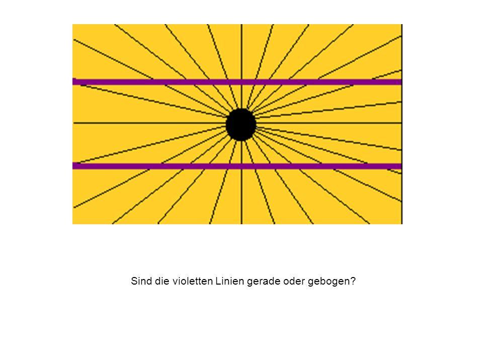 Sind die violetten Linien gerade oder gebogen