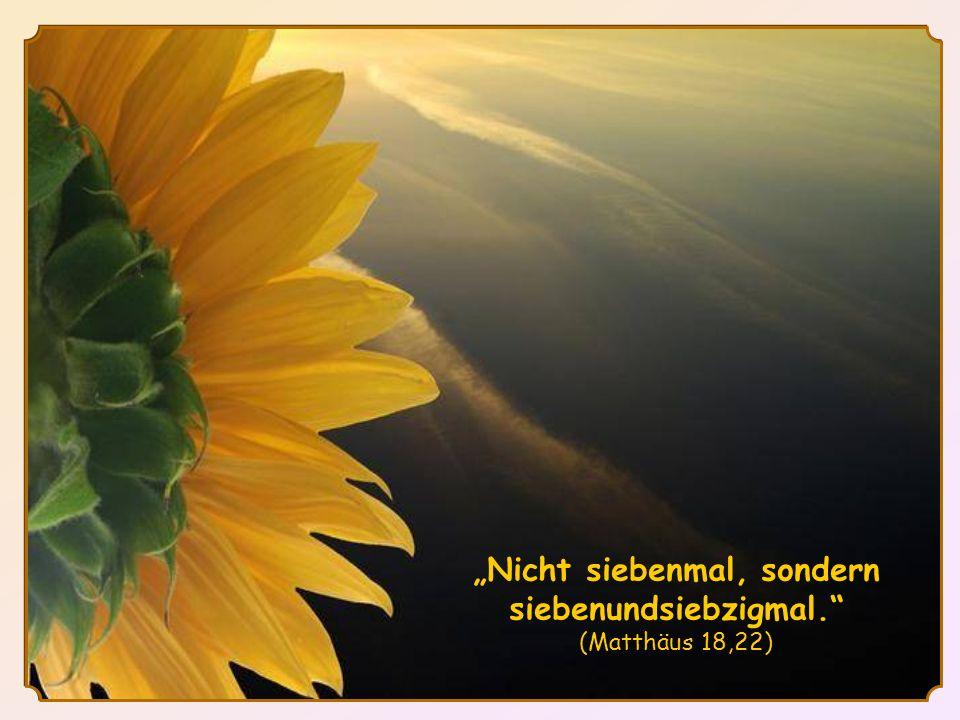 """""""Nicht siebenmal, sondern siebenundsiebzigmal. (Matthäus 18,22)"""