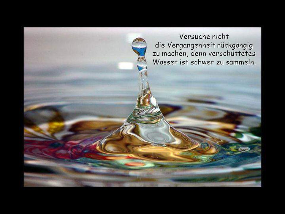 Versuche nicht die Vergangenheit rückgängig zu machen, denn verschüttetes Wasser ist schwer zu sammeln.
