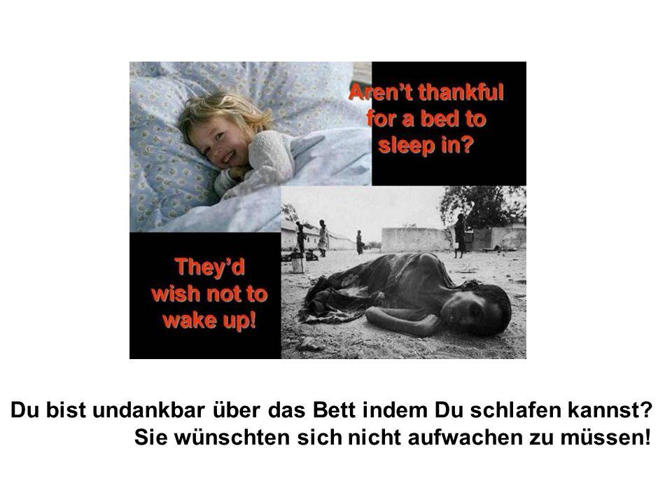 Sie wünschten sich nicht aufwachen zu müssen!