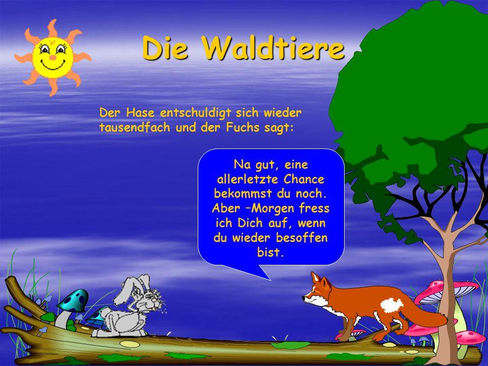 Die Waldtiere Der Hase entschuldigt sich wieder tausendfach und der Fuchs sagt: