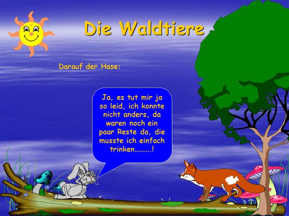 Die Waldtiere Darauf der Hase: