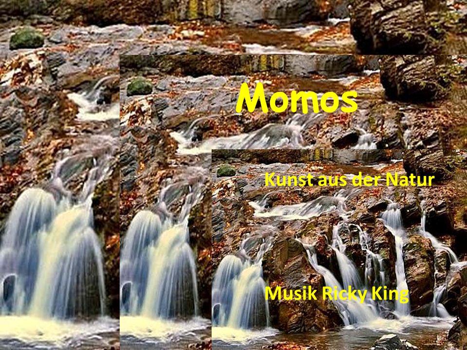 Momos Kunst aus der Natur Musik Ricky King