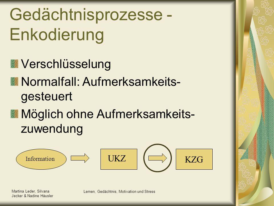 Gedächtnisprozesse - Enkodierung