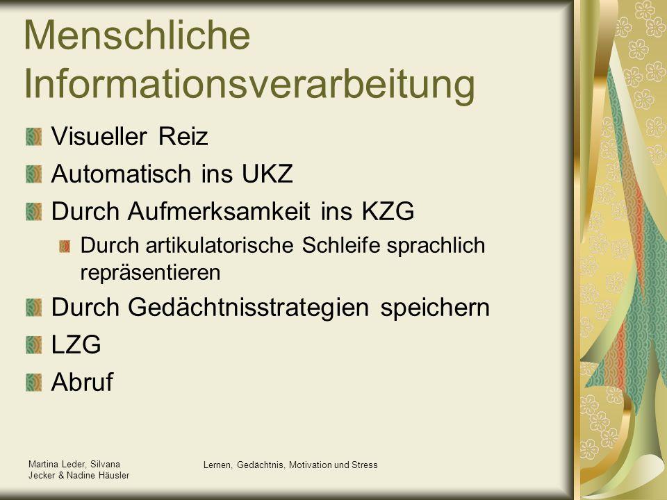 Menschliche Informationsverarbeitung