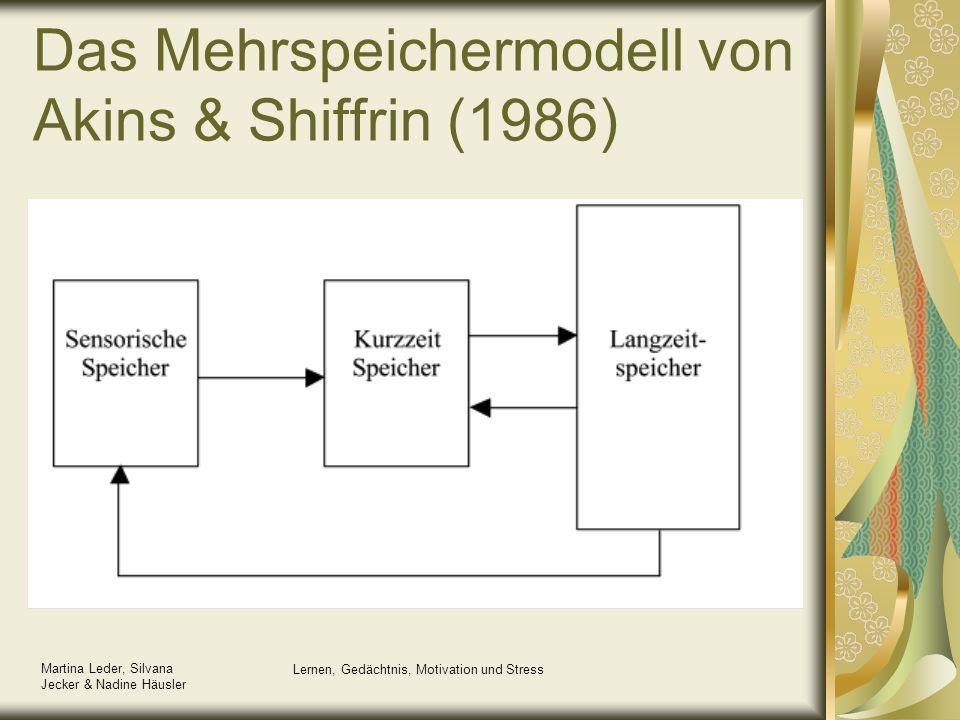 Das Mehrspeichermodell von Akins & Shiffrin (1986)