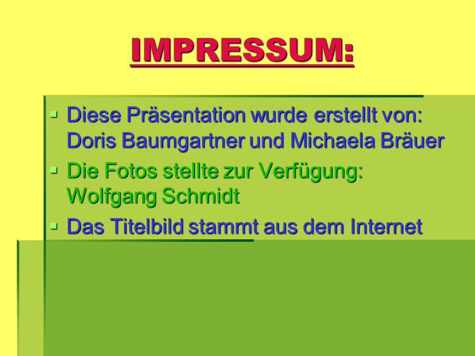 IMPRESSUM: Diese Präsentation wurde erstellt von: Doris Baumgartner und Michaela Bräuer.