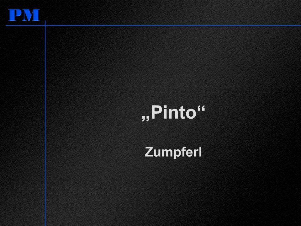 """""""Pinto Zumpferl Pinto von Ford bedeutet in Brasilien Zumpferl"""""""