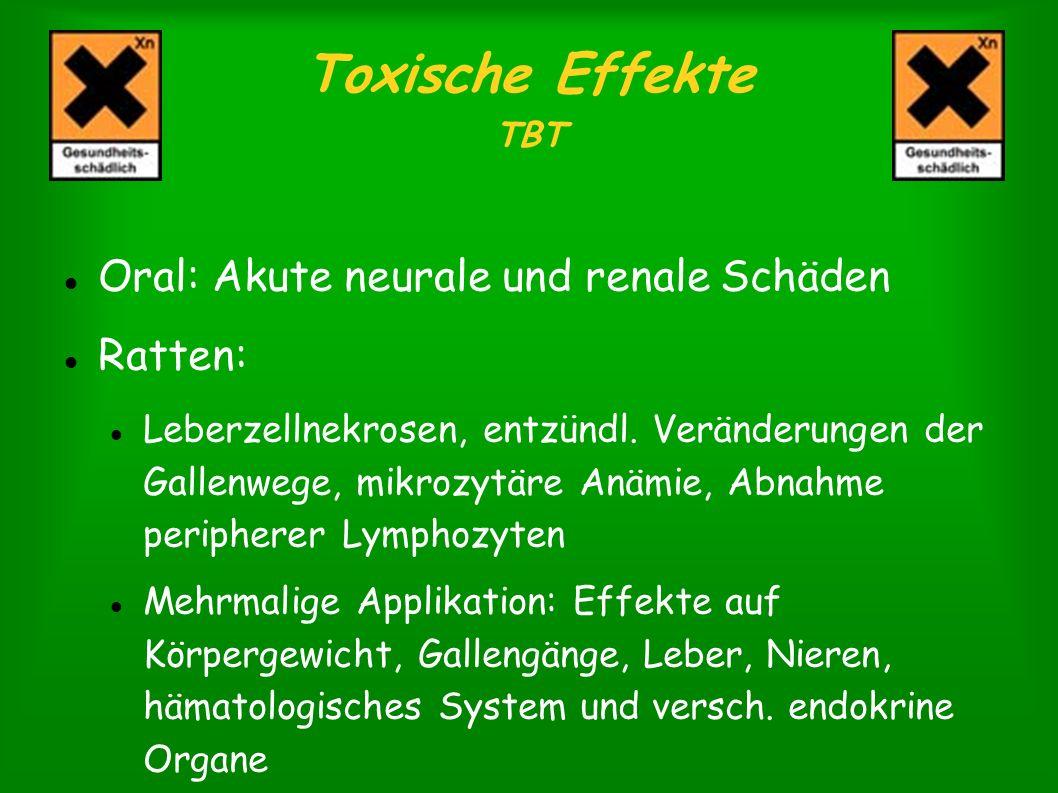 Toxische Effekte TBT Oral: Akute neurale und renale Schäden Ratten: