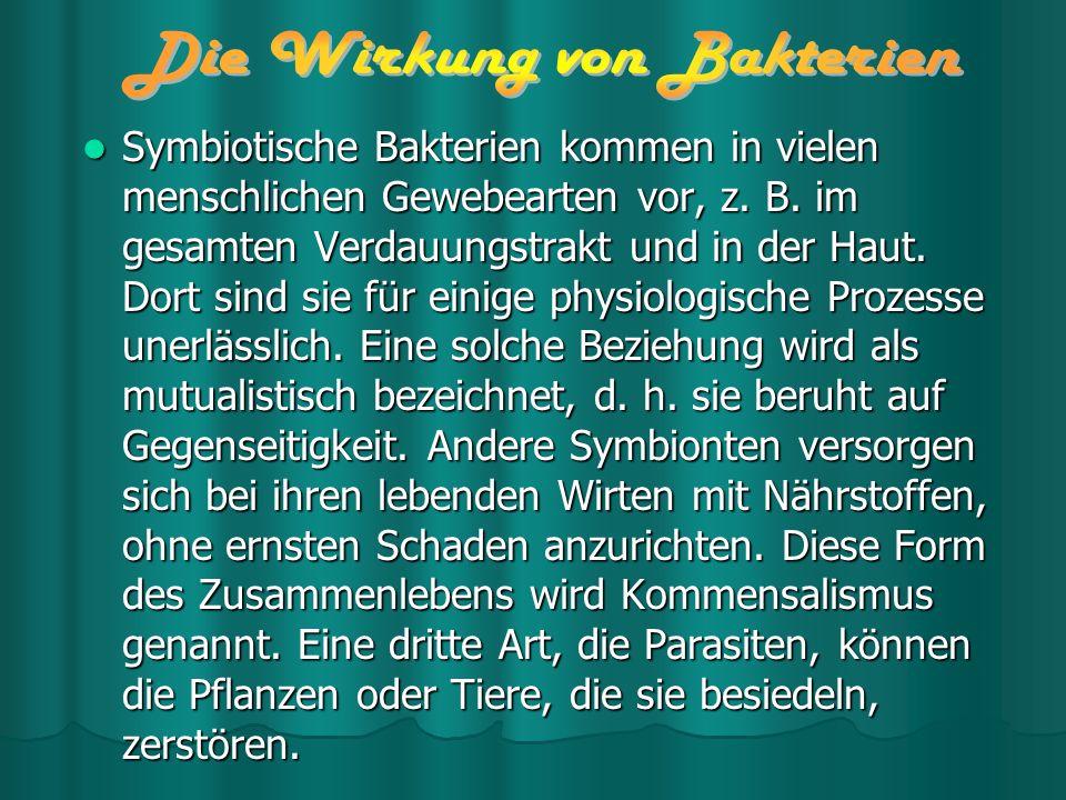 Die Wirkung von Bakterien