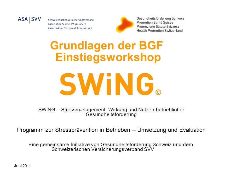 Grundlagen der BGF Einstiegsworkshop