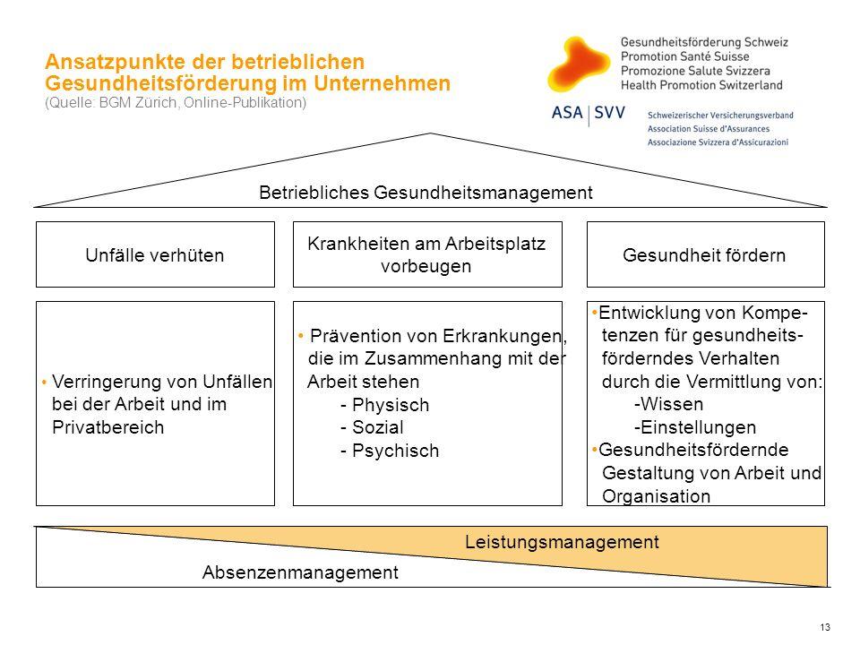 Ansatzpunkte der betrieblichen Gesundheitsförderung im Unternehmen (Quelle: BGM Zürich, Online-Publikation)