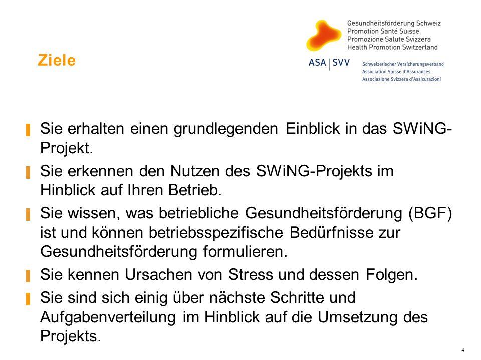 Ziele Sie erhalten einen grundlegenden Einblick in das SWiNG-Projekt. Sie erkennen den Nutzen des SWiNG-Projekts im Hinblick auf Ihren Betrieb.