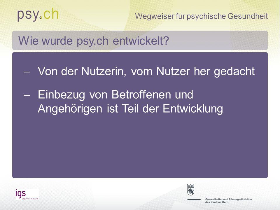 Wie wurde psy.ch entwickelt