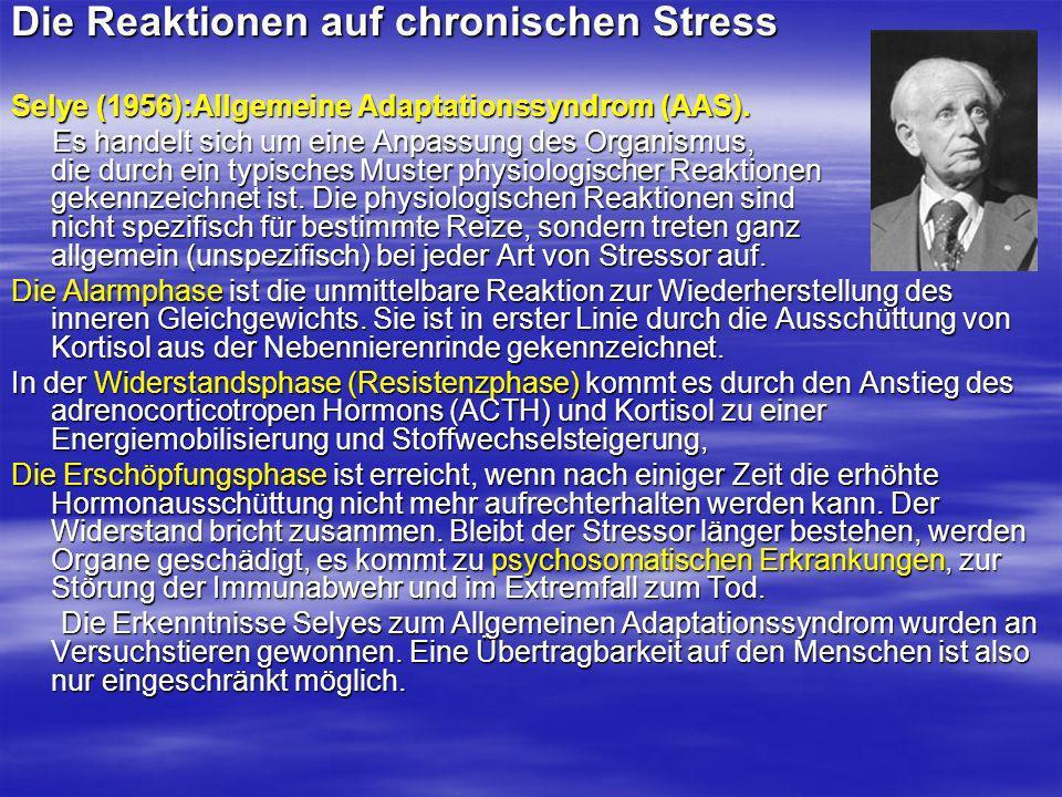 Die Reaktionen auf chronischen Stress
