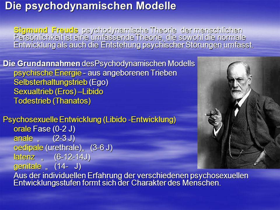 Die psychodynamischen Modelle
