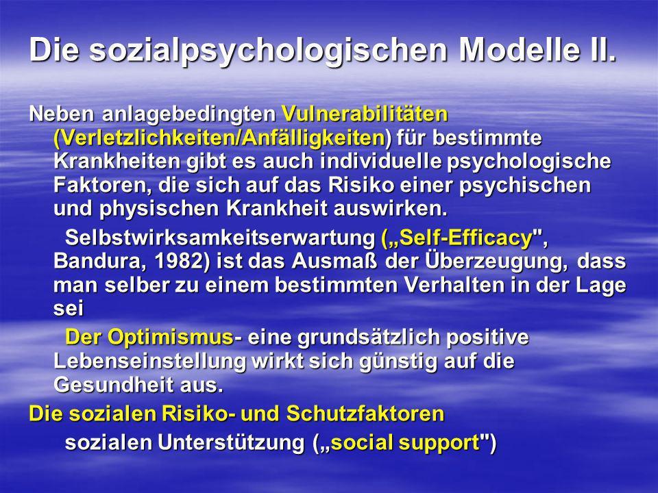 Die sozialpsychologischen Modelle II.