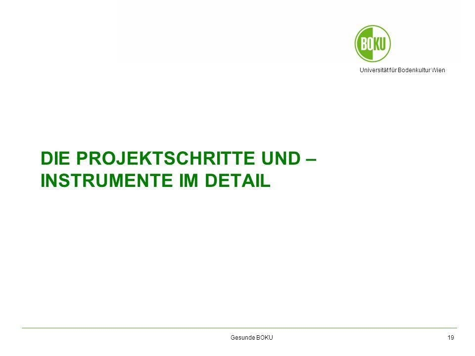 Die projektschritte und –instrumente im detail