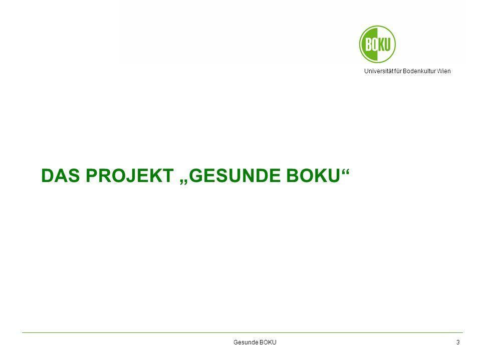 "Das Projekt ""Gesunde BOKU"