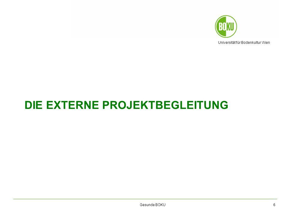 die externe projektbegleitung