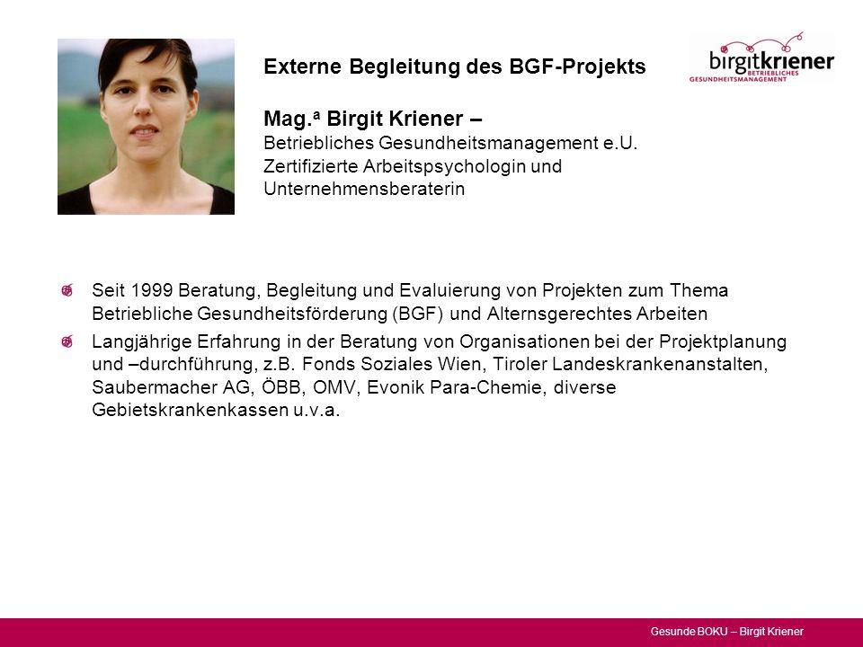 Externe Begleitung des BGF-Projekts Mag