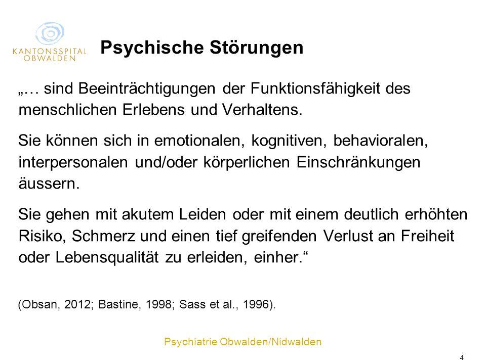 """Psychische Störungen """"… sind Beeinträchtigungen der Funktionsfähigkeit des menschlichen Erlebens und Verhaltens."""