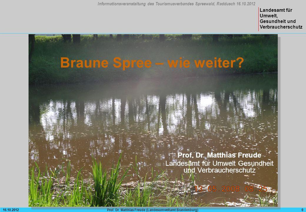 Bergbaubedingter Stoffeintrag in Fließgewässer: Eisen und Sulfat
