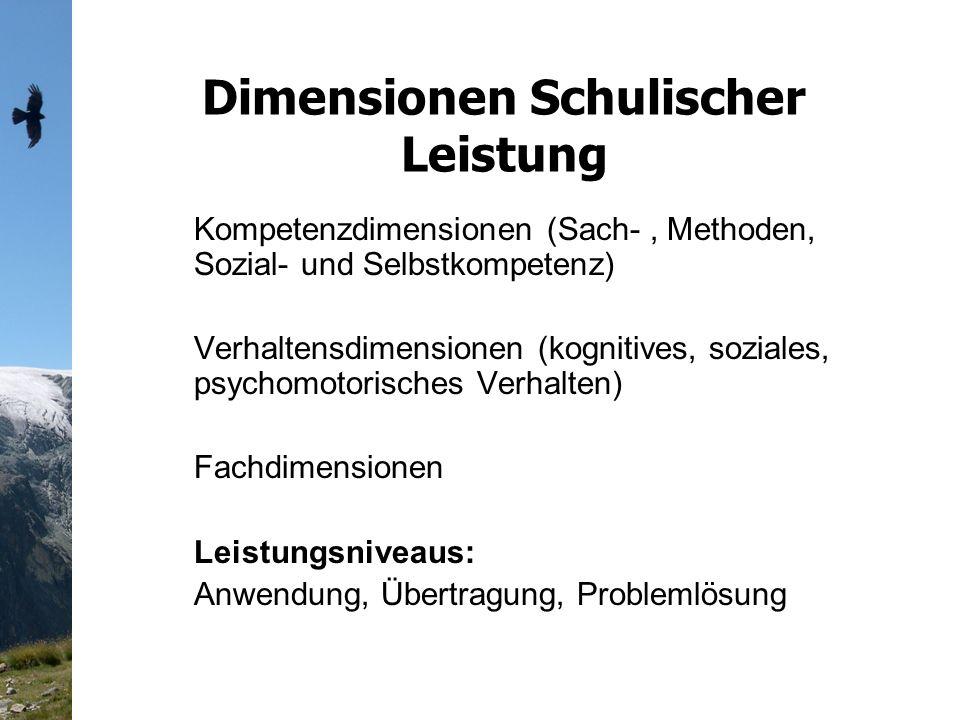 Dimensionen Schulischer Leistung