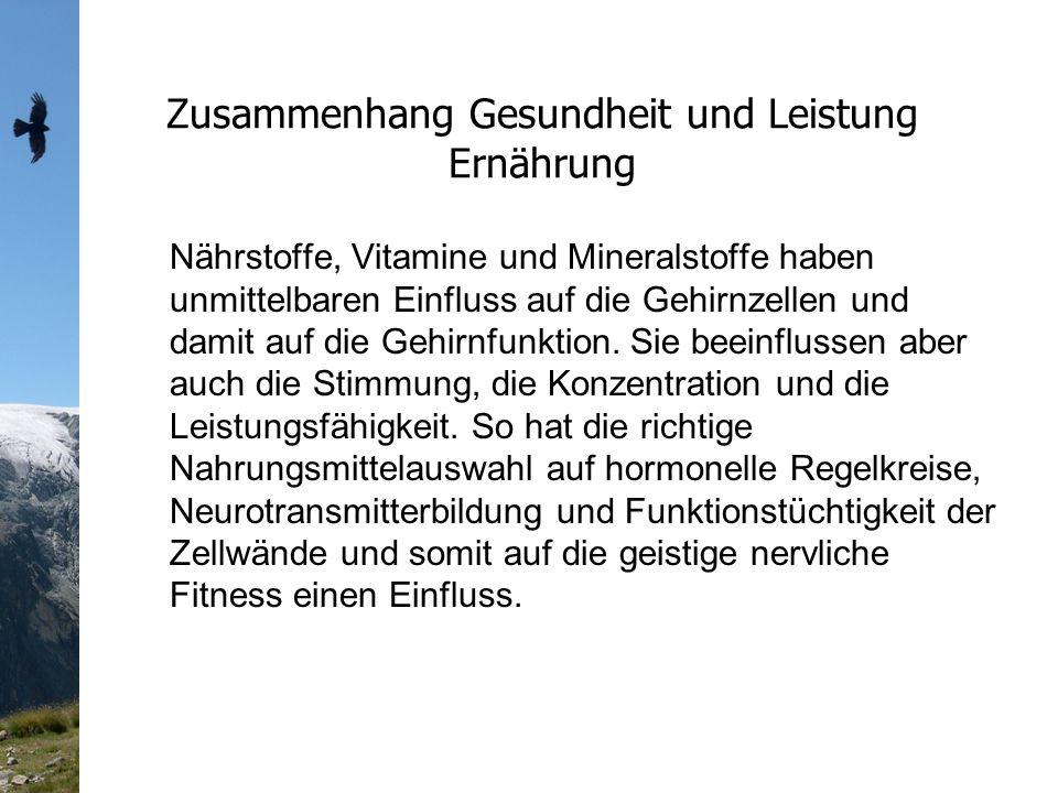 Zusammenhang Gesundheit und Leistung Ernährung