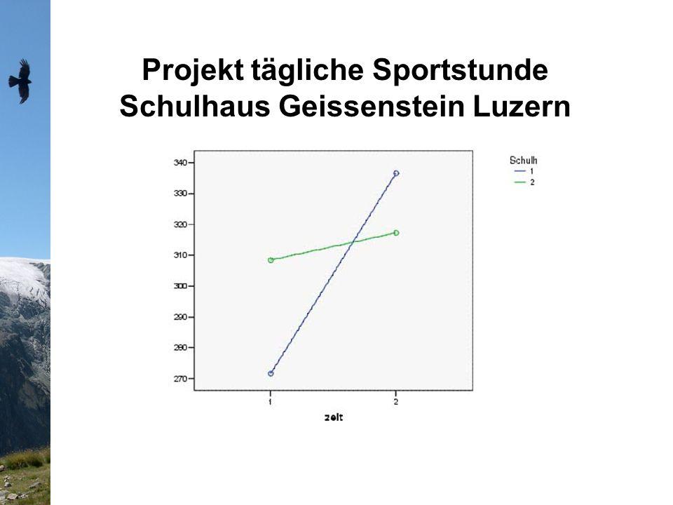 Projekt tägliche Sportstunde Schulhaus Geissenstein Luzern