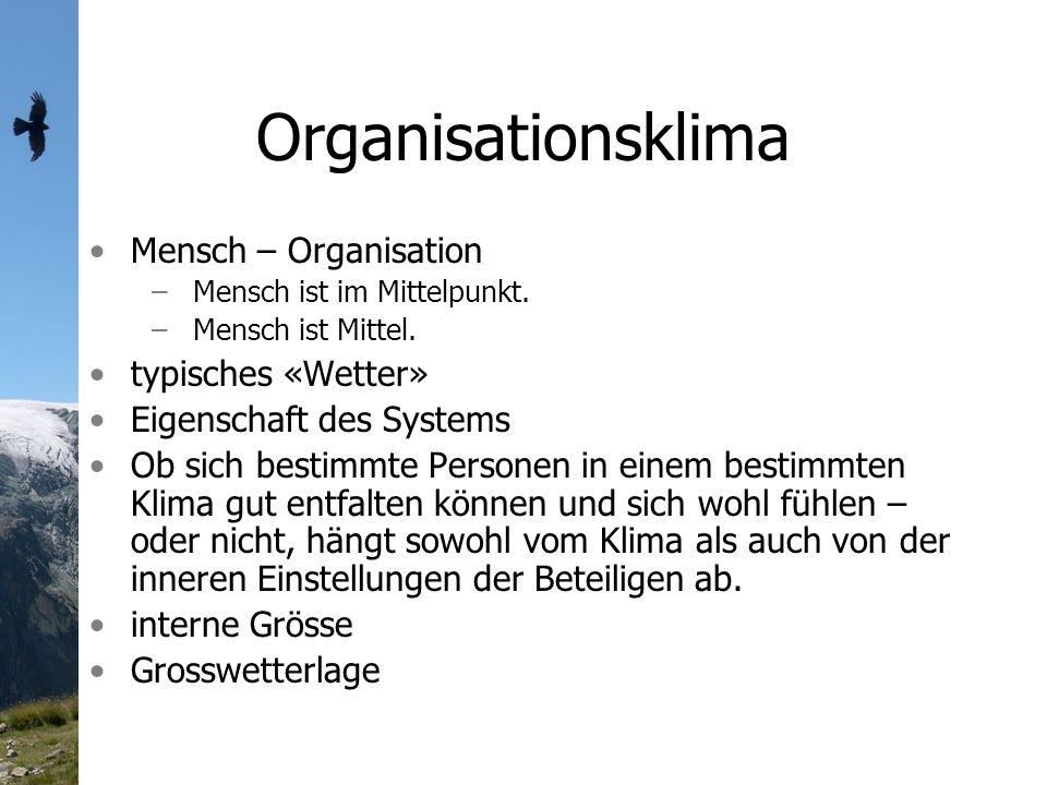 Organisationsklima Mensch – Organisation typisches «Wetter»