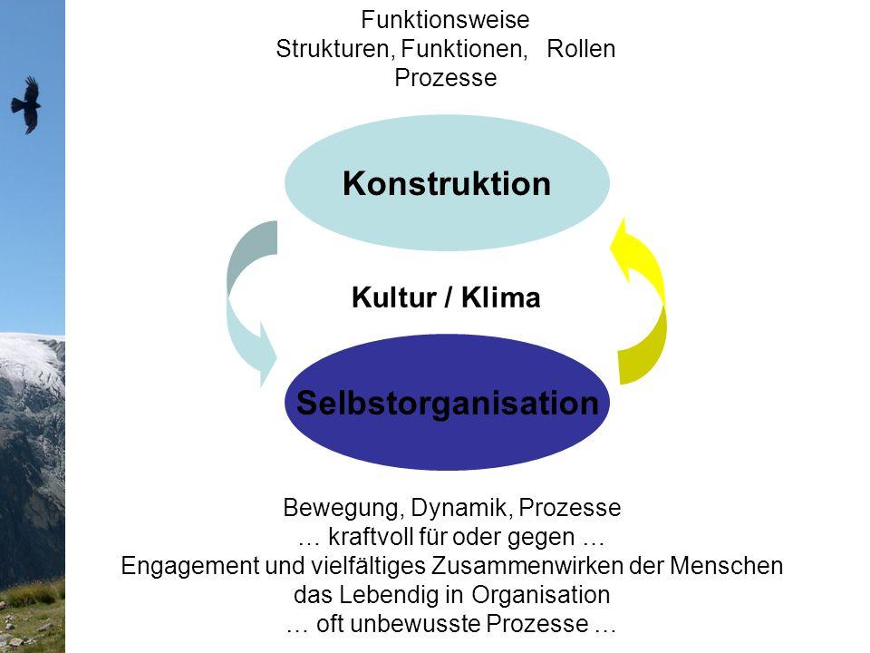 Konstruktion Selbstorganisation