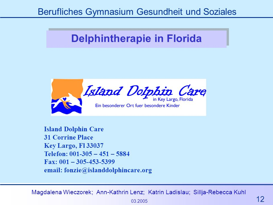 Delphintherapie in Florida