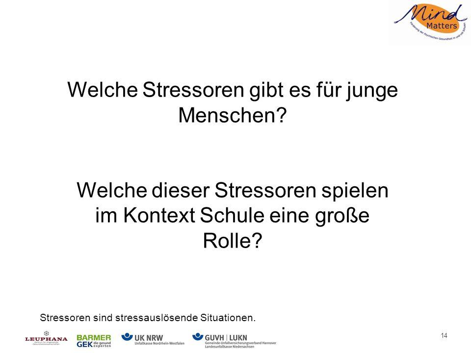 Stressoren für junge Menschen