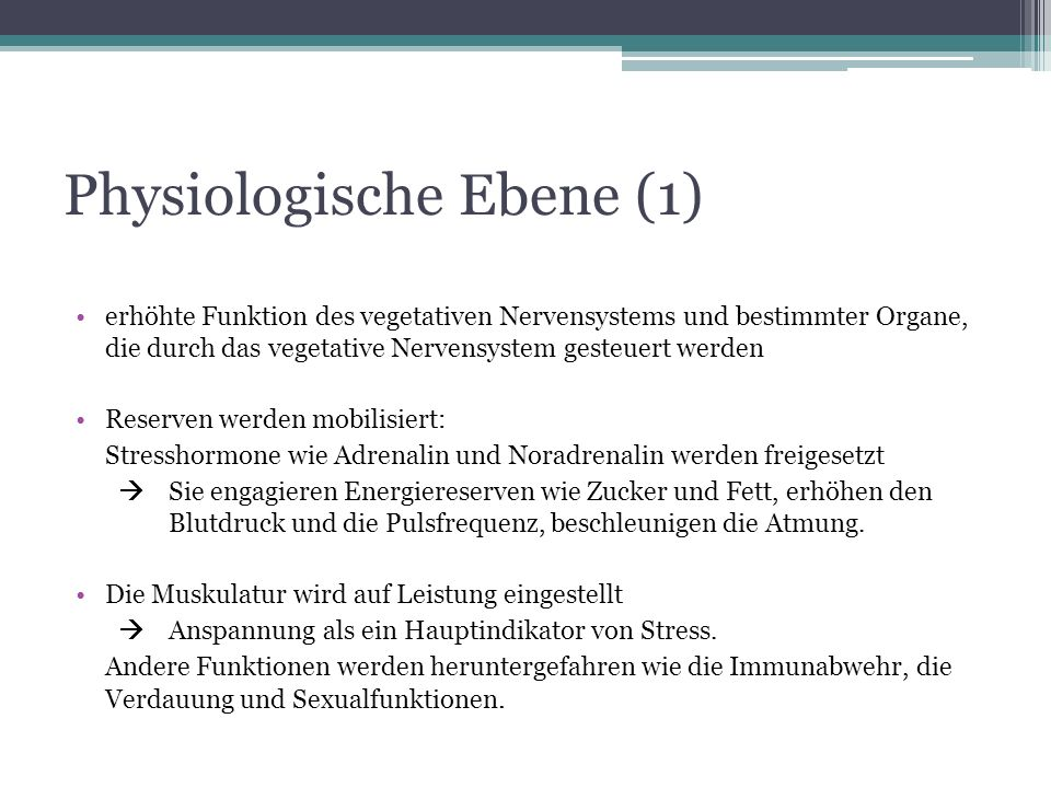 Physiologische Ebene (1)
