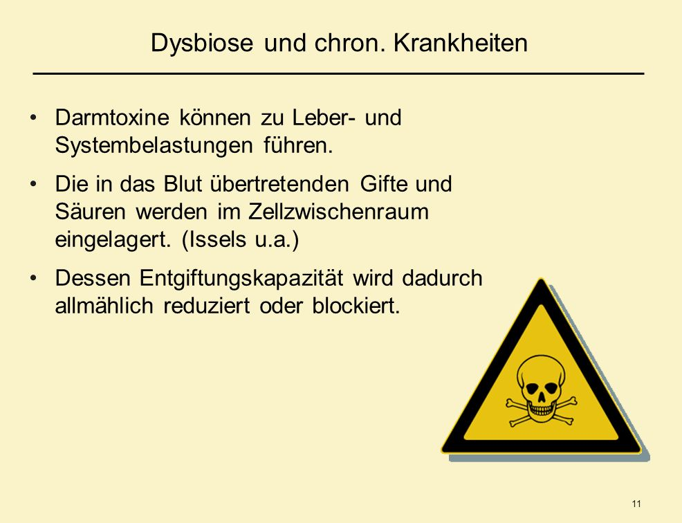 Dysbiose und chron. Krankheiten