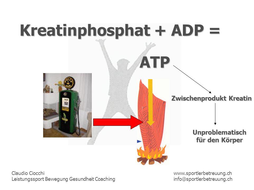 Kreatinphosphat + ADP =