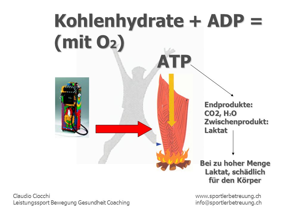 Kohlenhydrate + ADP = (mit O2) ATP Endprodukte: CO2, H2O
