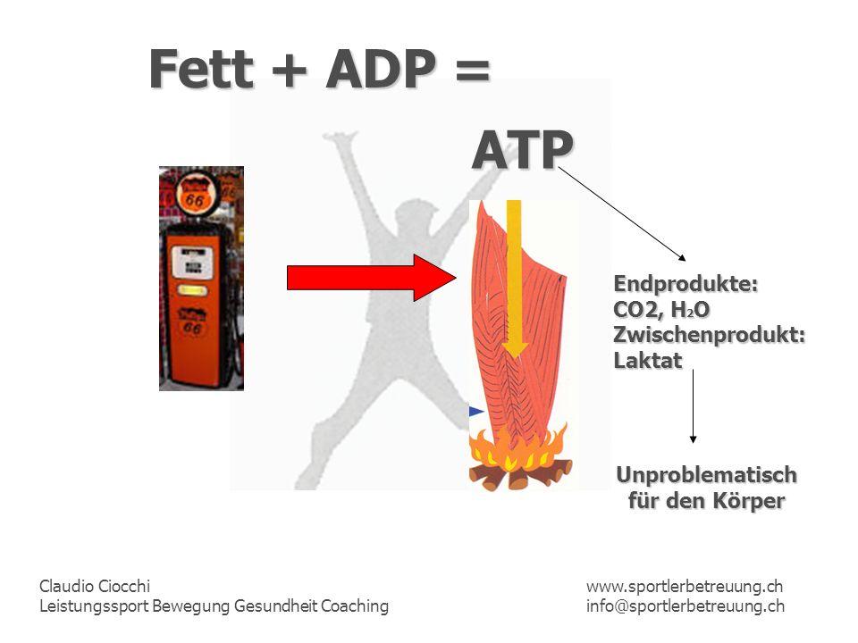 Fett + ADP = ATP Endprodukte: CO2, H2O Zwischenprodukt: Laktat