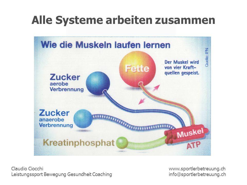 Alle Systeme arbeiten zusammen