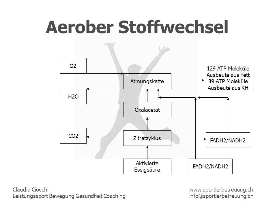 Aerober Stoffwechsel O2 129 ATP Moleküle Ausbeute aus Fett