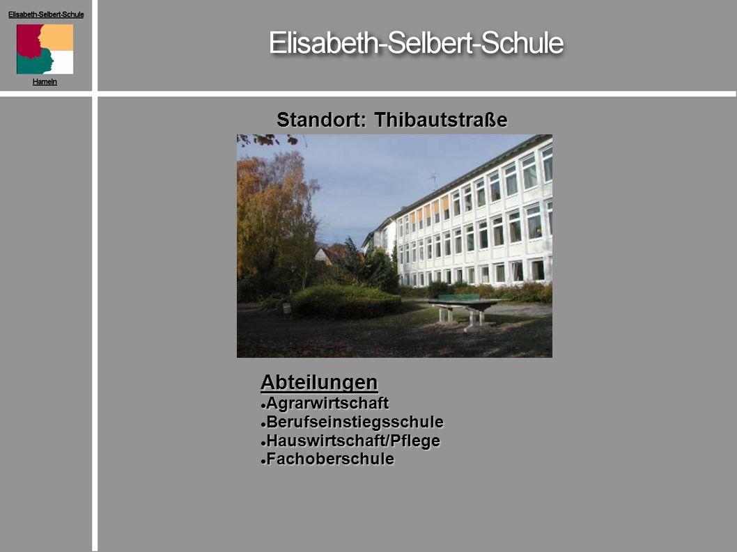 Standort: Thibautstraße