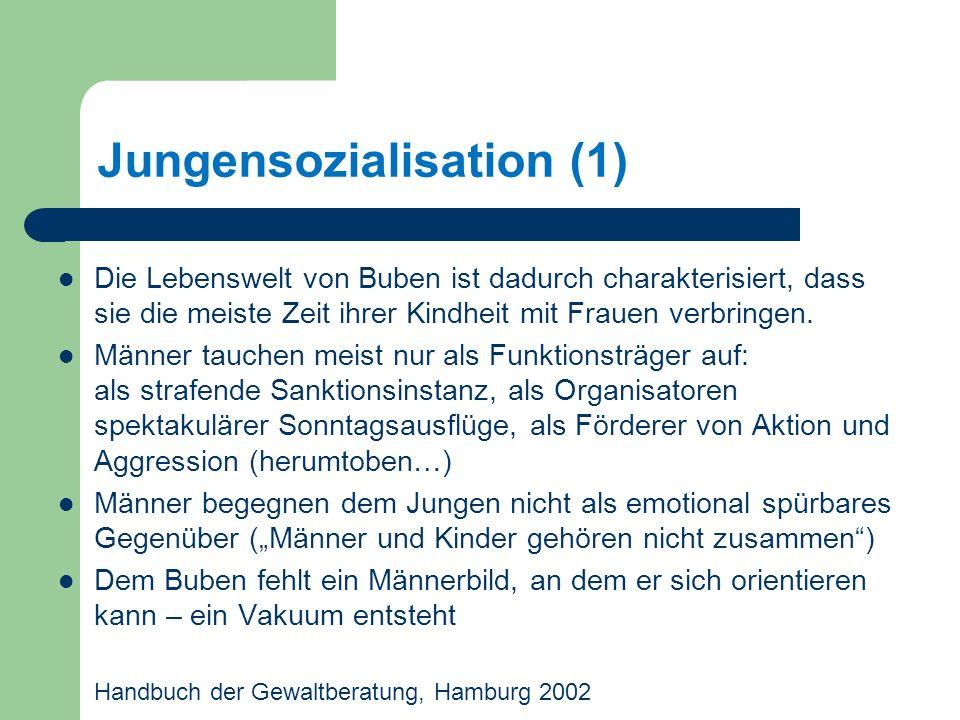 Jungensozialisation (1)