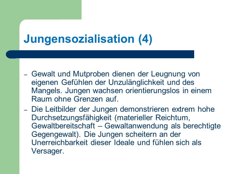 Jungensozialisation (4)