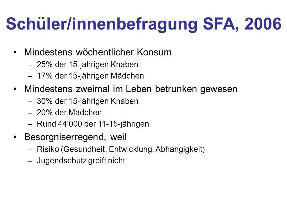 Schüler/innenbefragung SFA, 2006