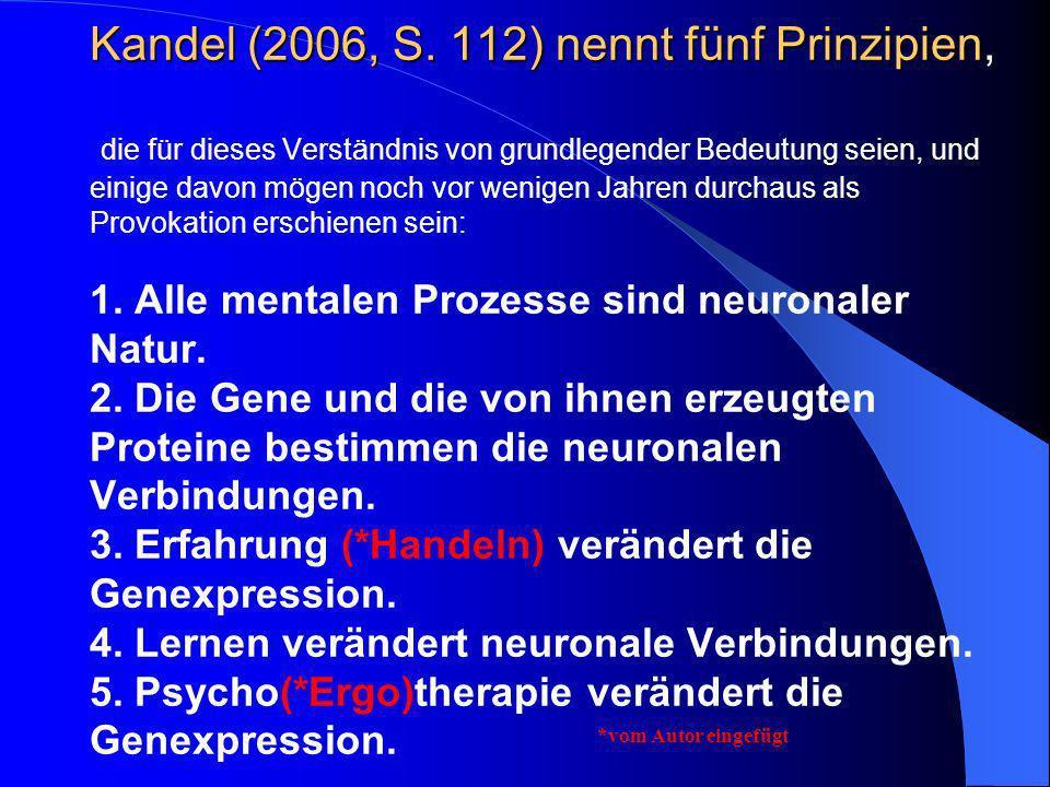 Kandel (2006, S. 112) nennt fünf Prinzipien, die für dieses Verständnis von grundlegender Bedeutung seien, und einige davon mögen noch vor wenigen Jahren durchaus als Provokation erschienen sein: 1. Alle mentalen Prozesse sind neuronaler Natur. 2. Die Gene und die von ihnen erzeugten Proteine bestimmen die neuronalen Verbindungen. 3. Erfahrung (*Handeln) verändert die Genexpression. 4. Lernen verändert neuronale Verbindungen. 5. Psycho(*Ergo)therapie verändert die Genexpression.