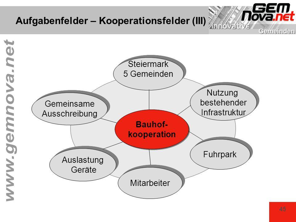 Aufgabenfelder – Kooperationsfelder (III)