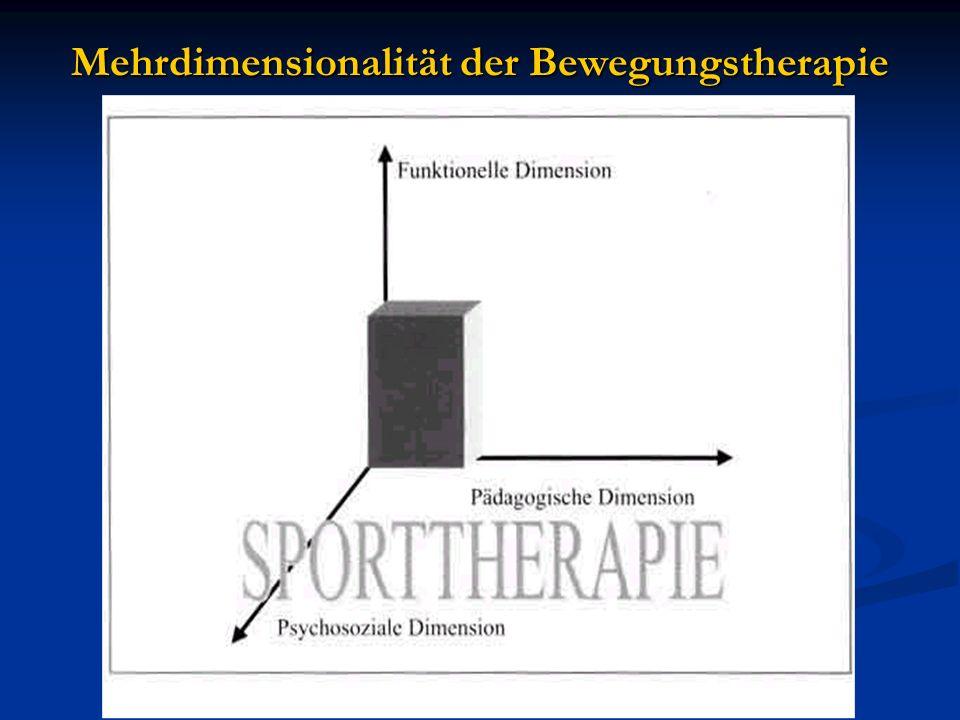 Mehrdimensionalität der Bewegungstherapie
