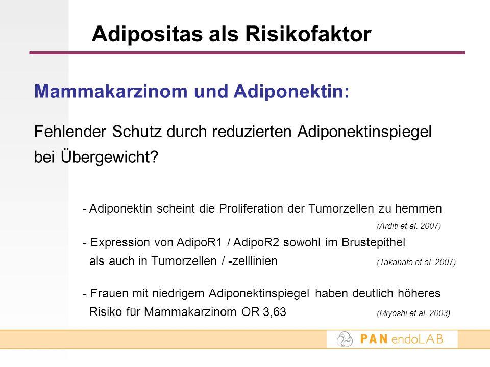Adipositas als Risikofaktor