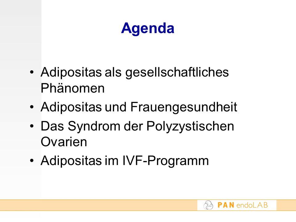 Agenda Adipositas als gesellschaftliches Phänomen